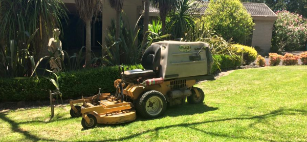 cheap lawn mowing in Melbourne